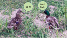 """If you have a #PR """"To Do"""" List, Then You May Also Need a PR """"Don't Do"""" List"""